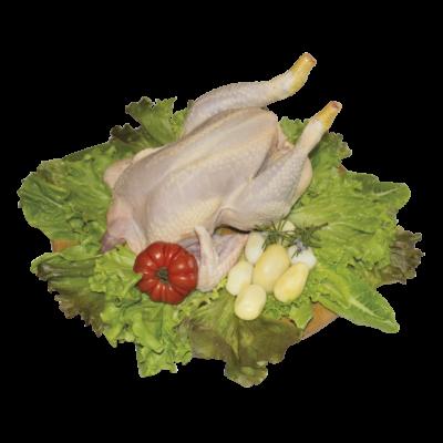 Il Pollo Occhiodoro