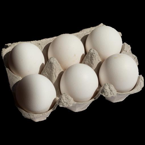 Uova fresche di Livornese Occhiodoro